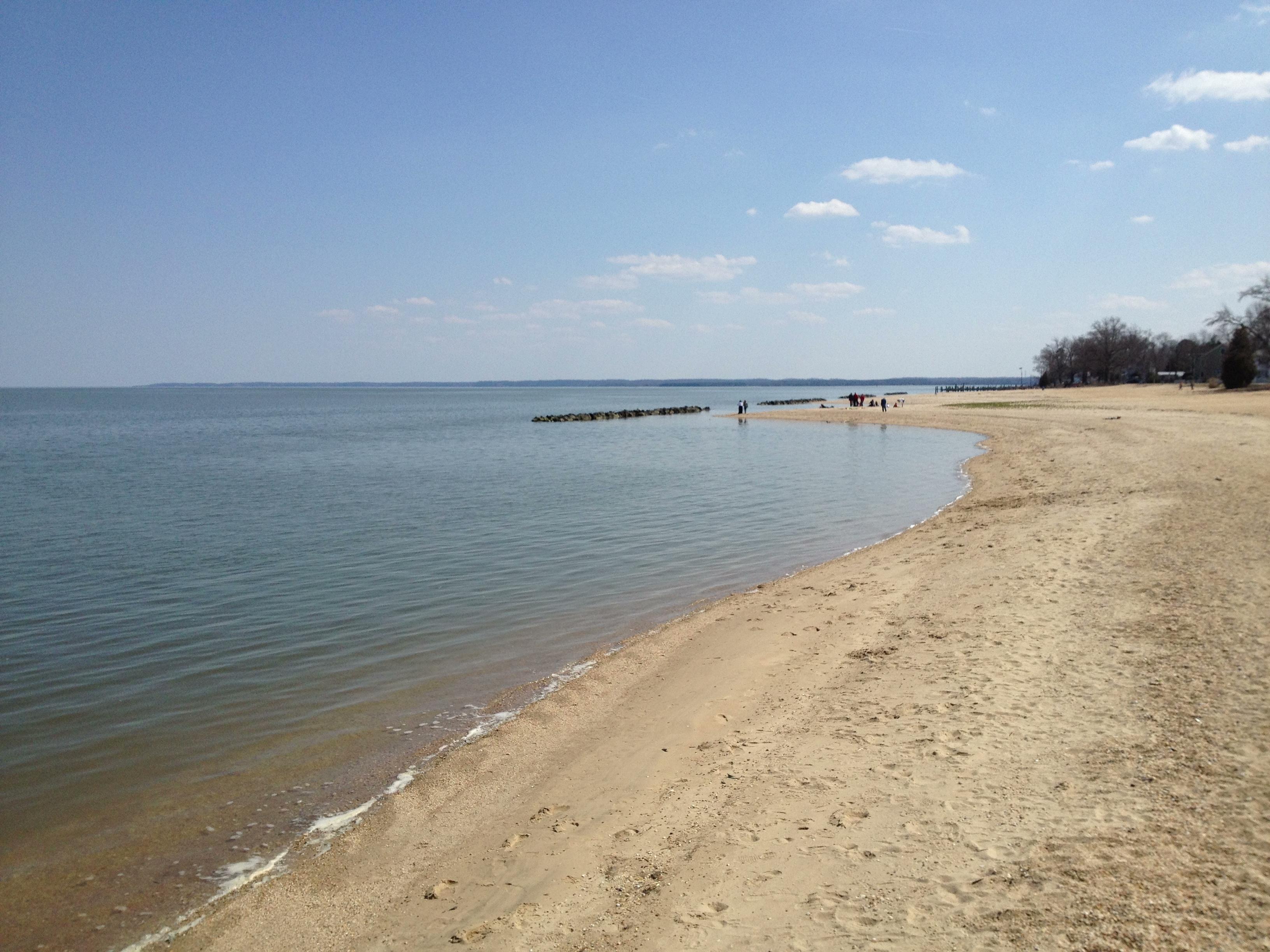 Colonial Beach Va Tinlizzieridesagain