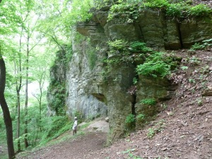 Explored the rocks along the trail, some with crazy creepy caves.