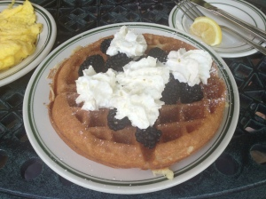 Guenther House Sweet Cream Waffle