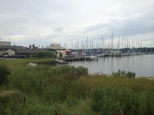 The second SAG stop was in Galeville, next to the harbor and The Pirates' Cove, a restaurant I'm sure I'd like - hey, it's pirates!