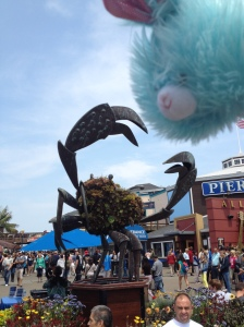 #edgar at Pier 39 (If you don't know Edgar yet, check out my Instagram account. He's taken it over. @earlettef)