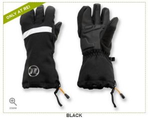 These are the REI Novara Stratos bike gloves I just ordered