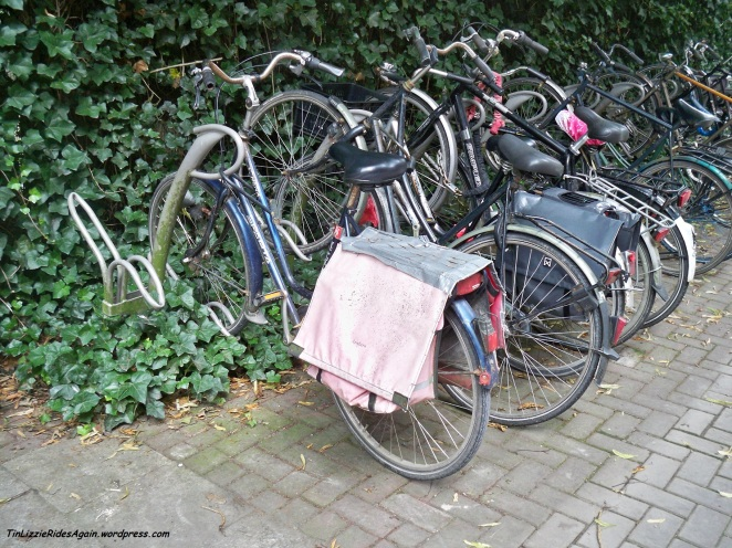 They might look rusty to us but are probably (?) well-used bikes!