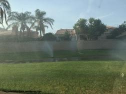 Watering the sidewalks in La Quinta