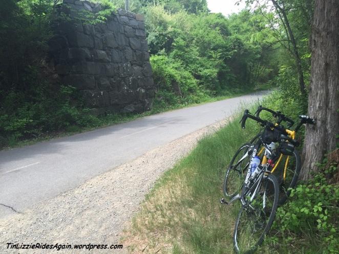 W&OD Trail 1