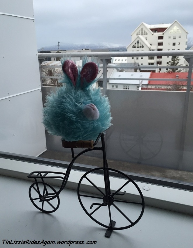 Edgar got to bike in Reykjavik