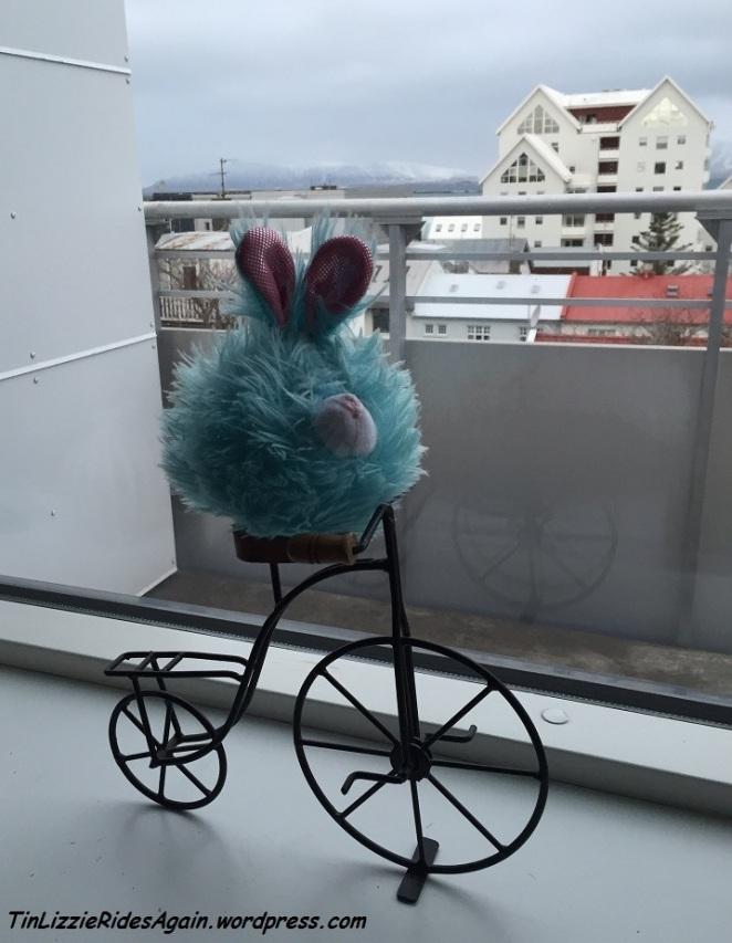 Edgar got to bike in Reykjavik