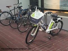 Bikeshare at Rach