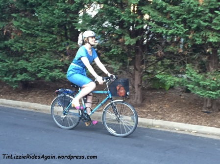 Mcalls 6520 on bike