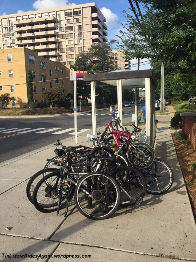 No doubt the bike racks next to this bus stop were intended for individuals to bike to the bus stop, to ease commute options. Now, however, it's yet another pile of dead bikes.