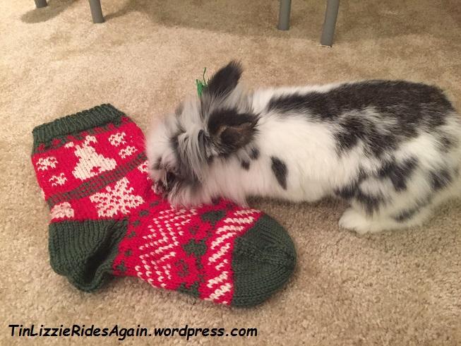 gastons-stocking