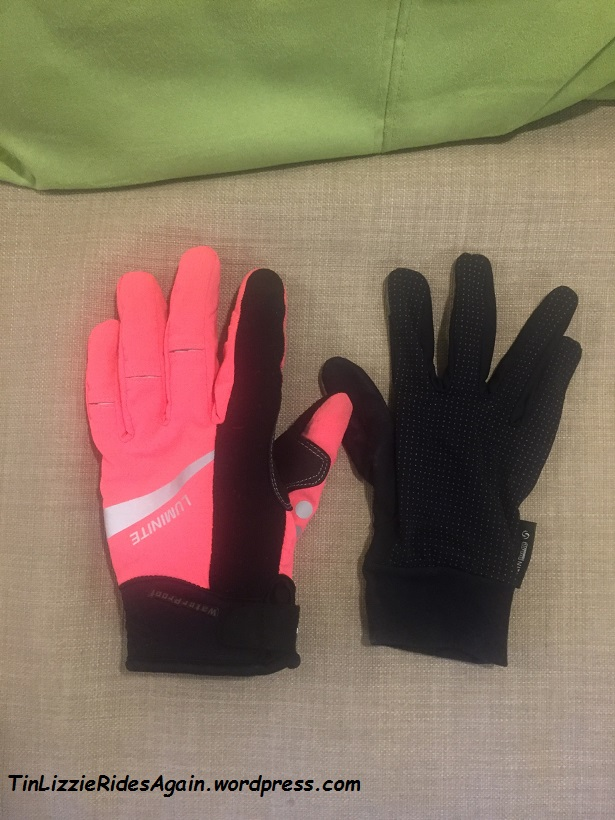 Anyone seen a pair of gloves like this, but opposite?