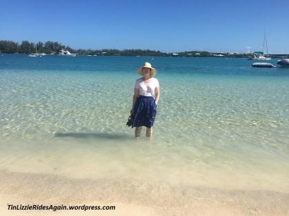 Bermuda Finding Dory